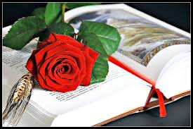La rosa i el llibre del dia de Sant Jordi
