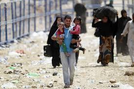 Los refugiados que llegan a Europa tropiezan con las dificultades políticas, económicas y xenófobas
